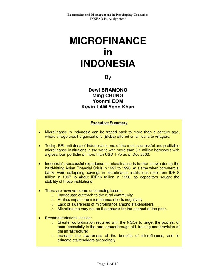 Economics and Management in Developing Countries                              INSEAD P4 Assignment                  MICROF...