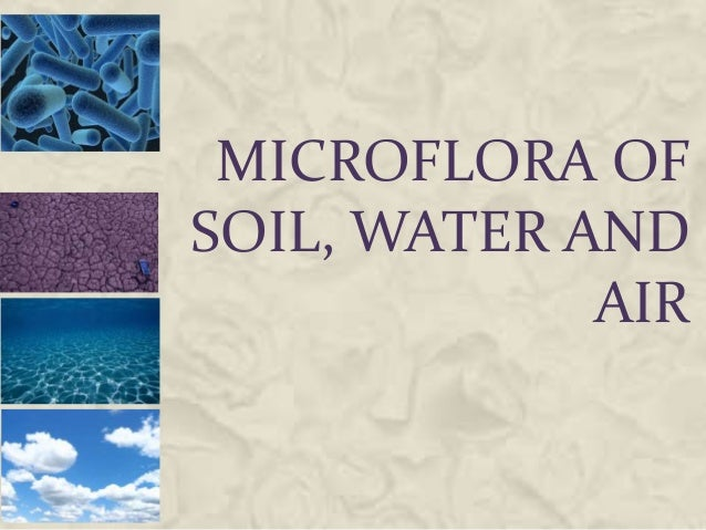 Microflora of soil, water and air