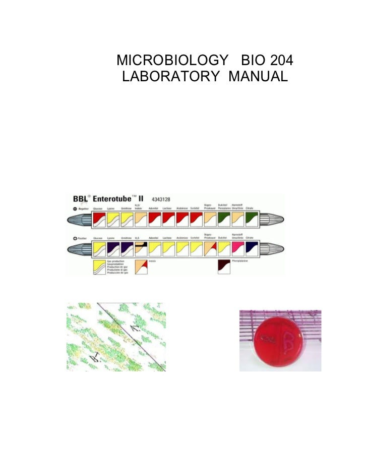 MICROBIOLOGY BIO 204LABORATORY MANUAL