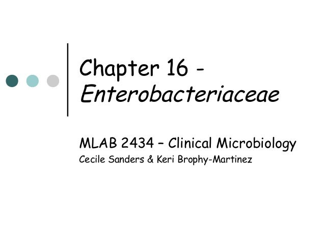 Chapter 16 Enterobacteriaceae MLAB 2434 – Clinical Microbiology Cecile Sanders & Keri Brophy-Martinez