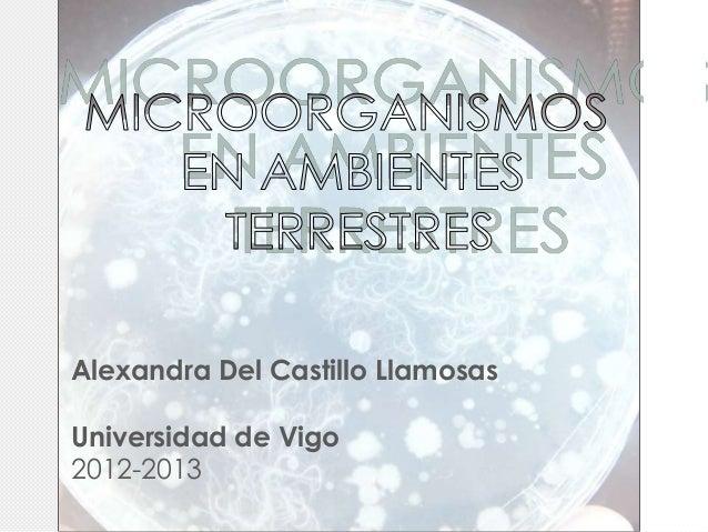 Alexandra Del Castillo LlamosasUniversidad de Vigo2012-2013