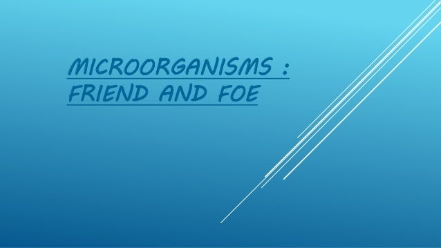 MICROORGANISMS : FRIEND AND FOE