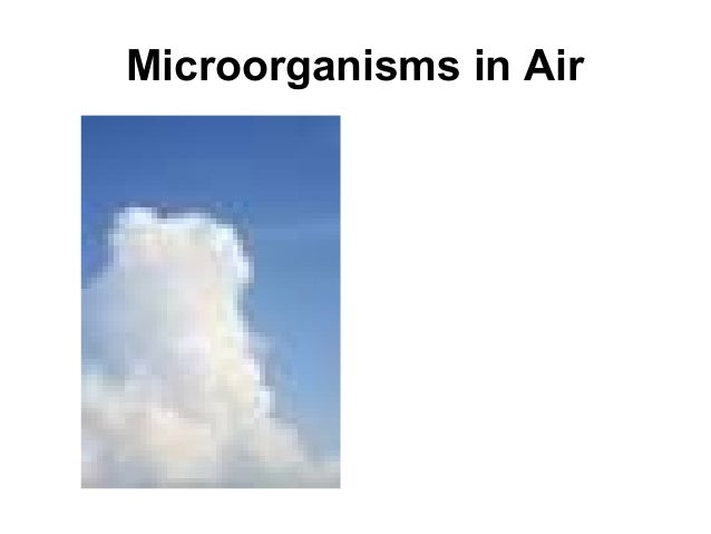 microorganisms in air While numerous studies have characterized the community composition of airborne microorganisms in various settings in the built environment, less is known about specific sources and even less about their emission rates.