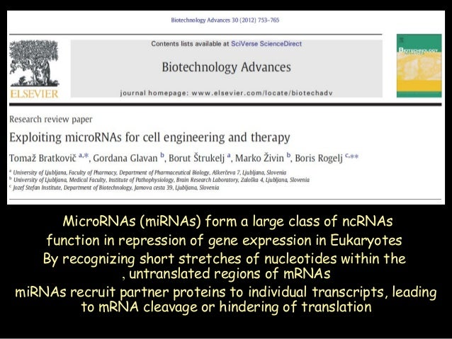 MicroRNAs (miRNAs) form a large class of ncRNAs function in repression of gene expression in Eukaryotes By recognizing sho...