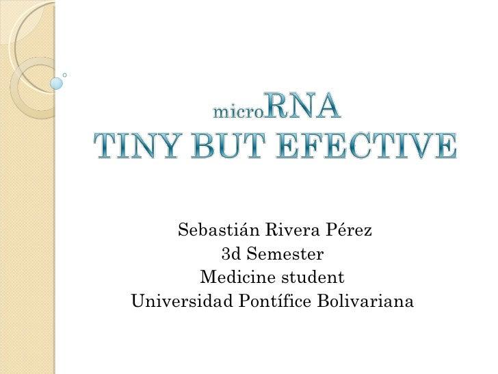 Sebastián Rivera Pérez 3d Semester Medicine student Universidad Pontífice Bolivariana