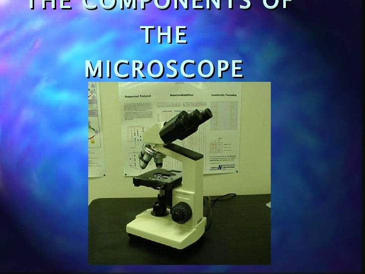 THE COMPONENTS OF  THE MICROSCOPE
