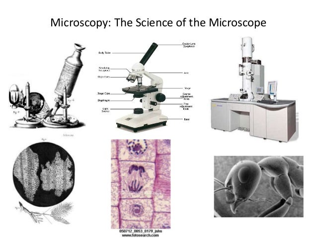 Microscopy: The Science of the Microscope