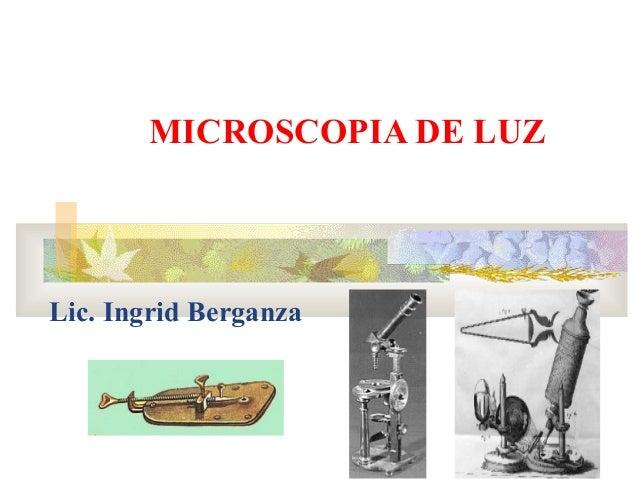Microscopia ingrisita 2a