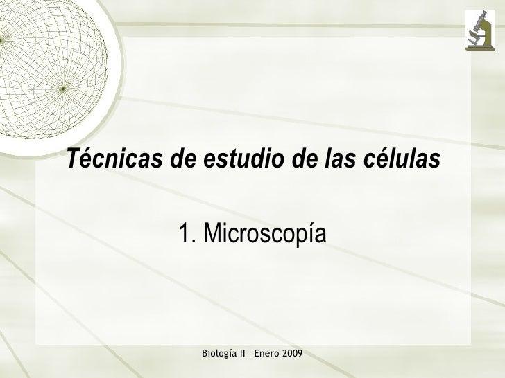 Microscopio 1232371283375771-1