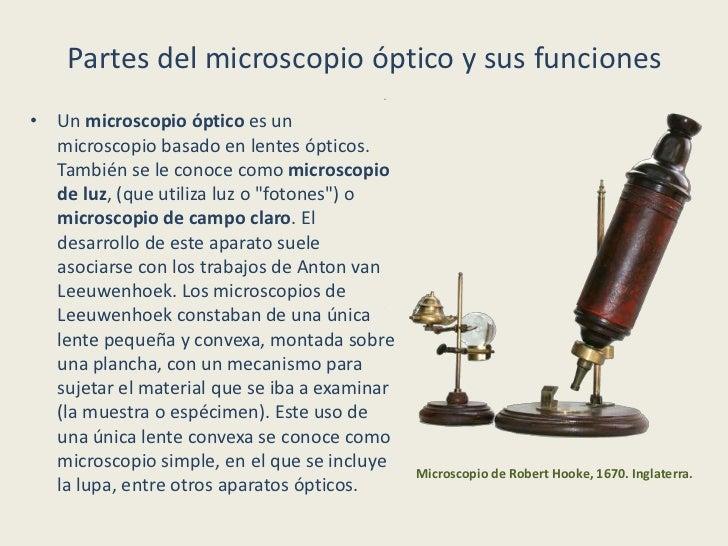 Partes del Microscopio - Informaci n y Caracter sticas
