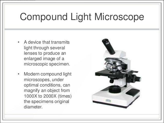 Modern Compound Light Microscope