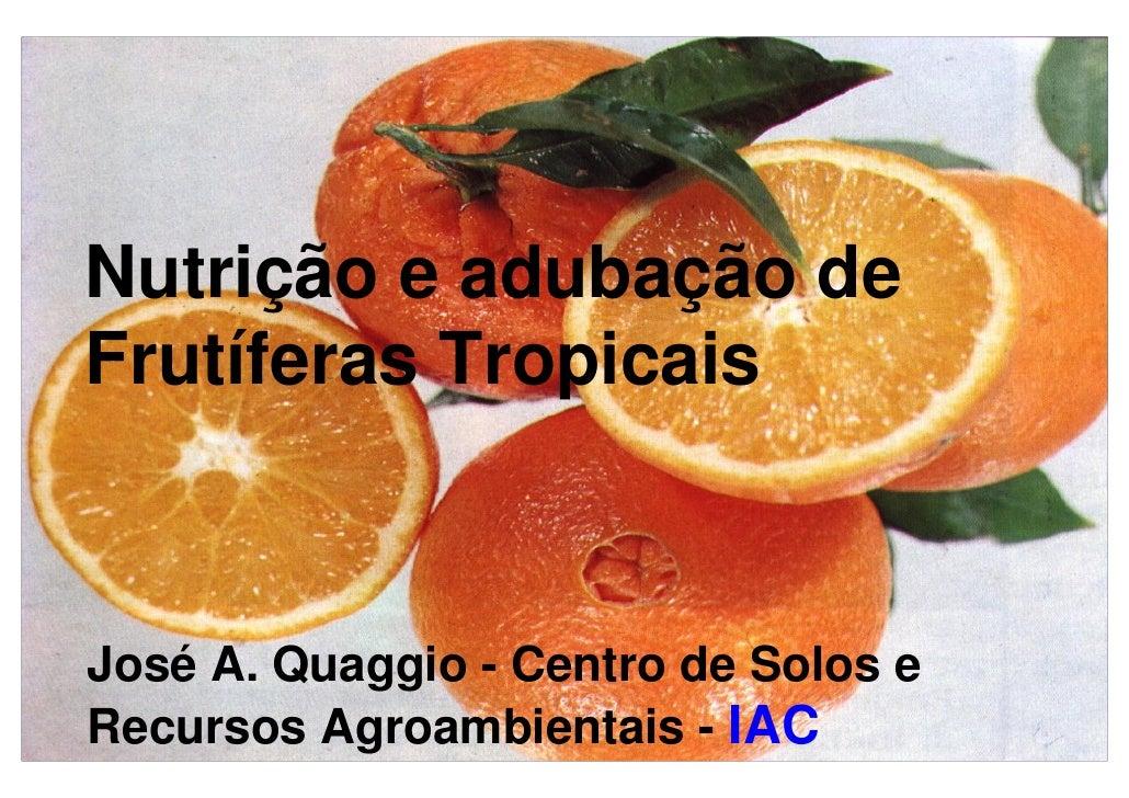 Nutrição e adubação de Frutíferas Tropicais    José A. Quaggio - Centro de Solos e Recursos Agroambientais - IAC