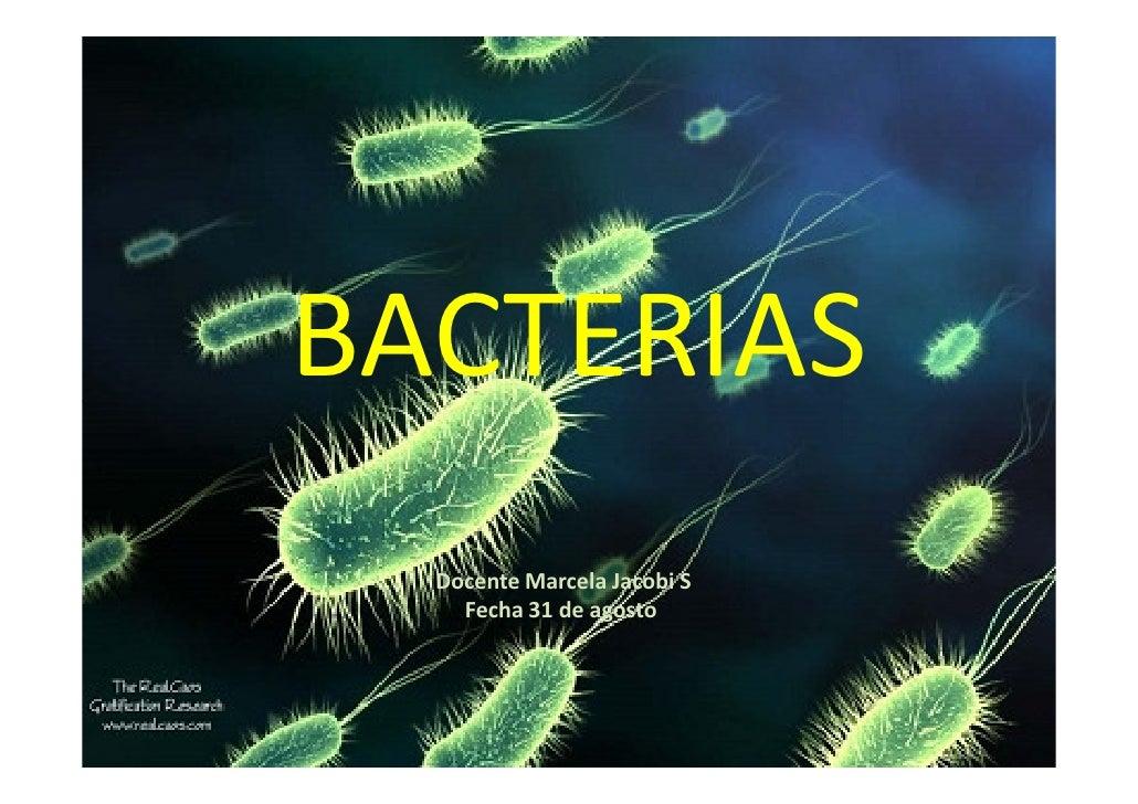 Microsoft power point   bacterias  clase 4 pdf