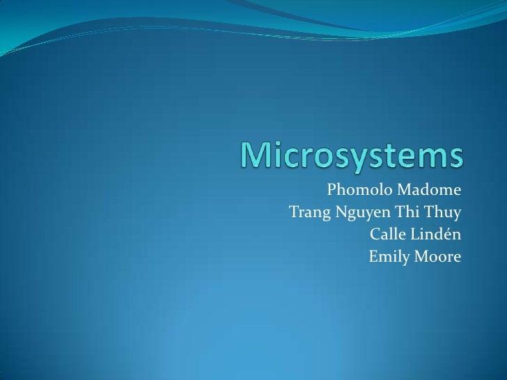 Microsystem3