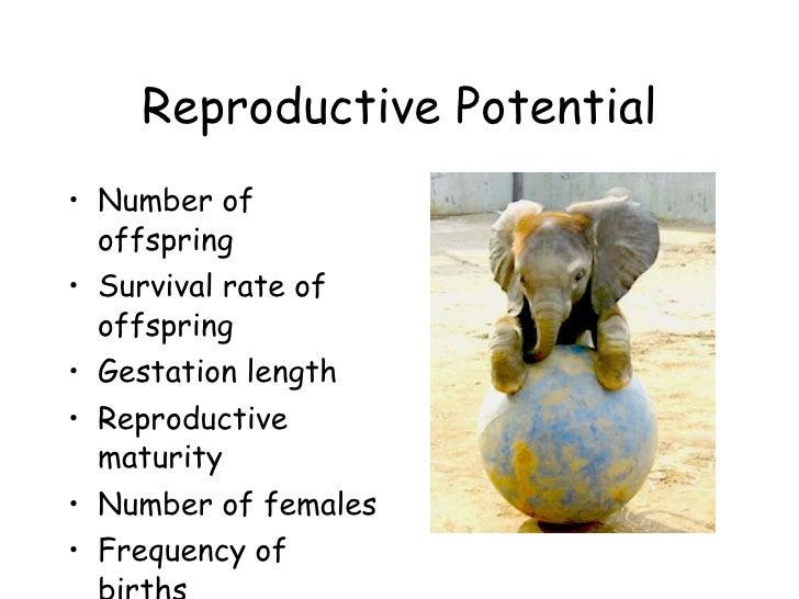Reproductive Potential <ul><li>Number of offspring </li></ul><ul><li>Survival rate of offspring </li></ul><ul><li>Gestatio...