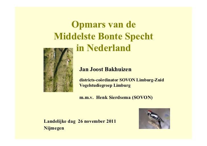 Opmars van de    Middelste Bonte Specht        in Nederland               Jan Joost Bakhuizen               districts-coör...