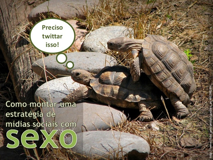 http://www.flickr.com/photos/gonzalo_ar/495298289/ Preciso twittar isso!