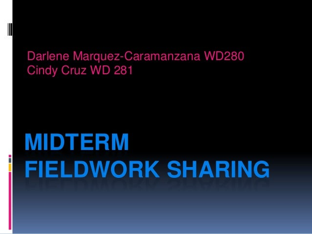 Midterm Fieldwork Sharing Darlene Caramanzana and Cindy Cruz-Cabrera February 2013 Presentation
