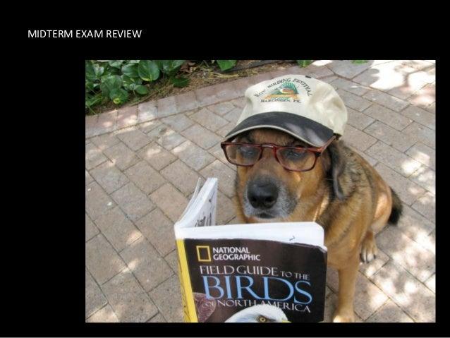 Ems - Summer I '11 - T101 Midterm Exam Review