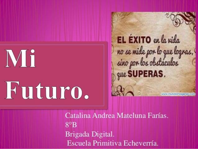 Catalina Andrea Mateluna Farías. 8°B Brigada Digital. Escuela Primitiva Echeverría.