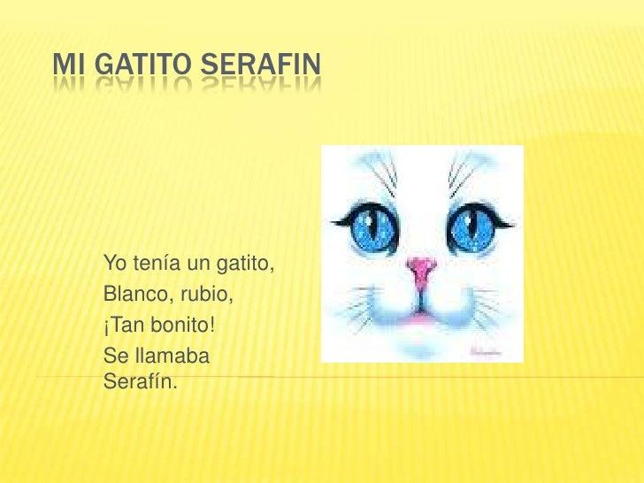 MI GATITO SERAFIN<br />Yo tenía un gatito, <br />Blanco, rubio, <br />¡Tan bonito!<br />Se llamaba Serafín.<br />