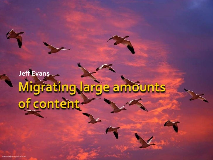 Migrating Large Amounts of Web Content