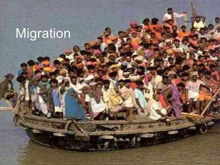Migration  lesson 2
