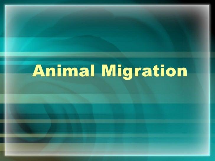 Migration introduction