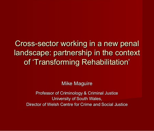 Cross-sector working in a new penal landscape