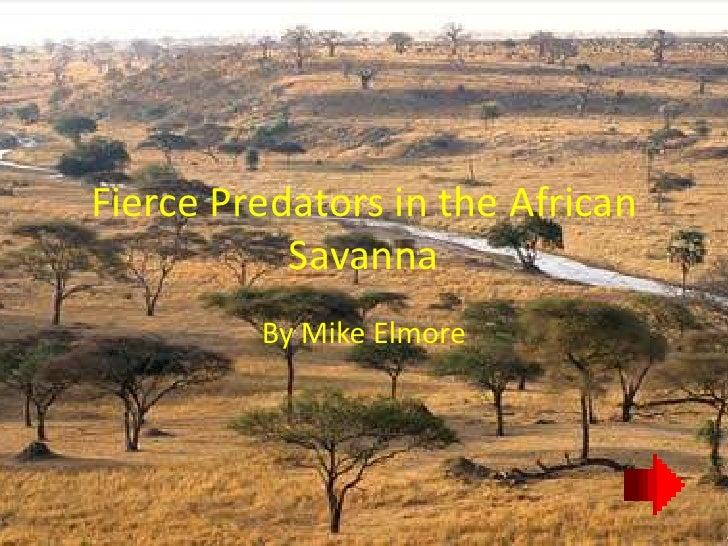 Fierce Predators in the African            Savanna          By Mike Elmore