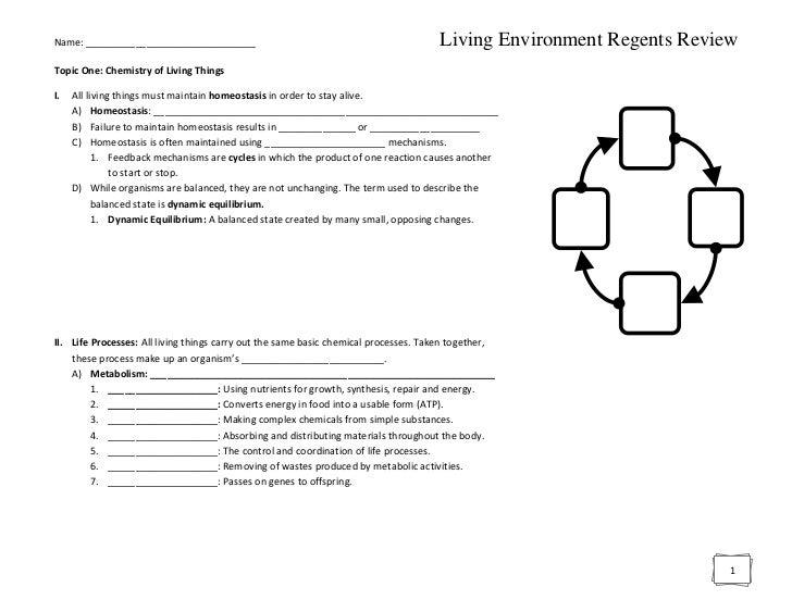 Name: _______________________________                                                Living Environment Regents ReviewTopi...