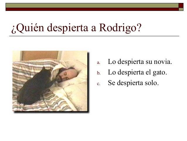 ¿Quién despierta a Rodrigo?                 a.   Lo despierta su novia.                 b.   Lo despierta el gato.        ...
