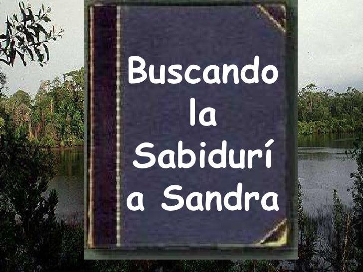 Buscando la  Sabiduría Sandra<br />