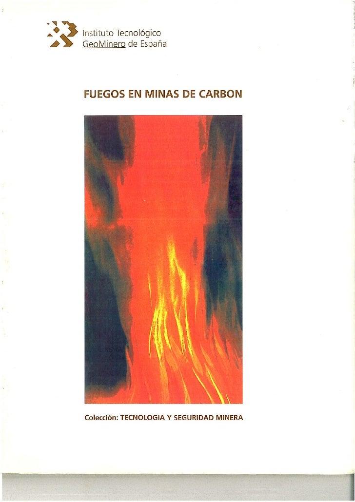 Mi libro sobre fuegos