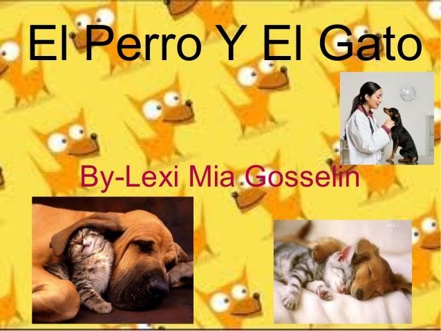 El Perro Y El Gato By-Lexi Mia Gosselin