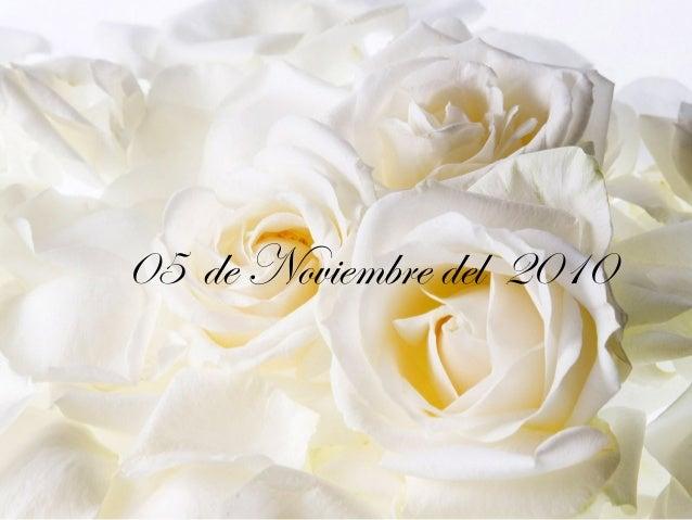 05 de Noviembre del 2010
