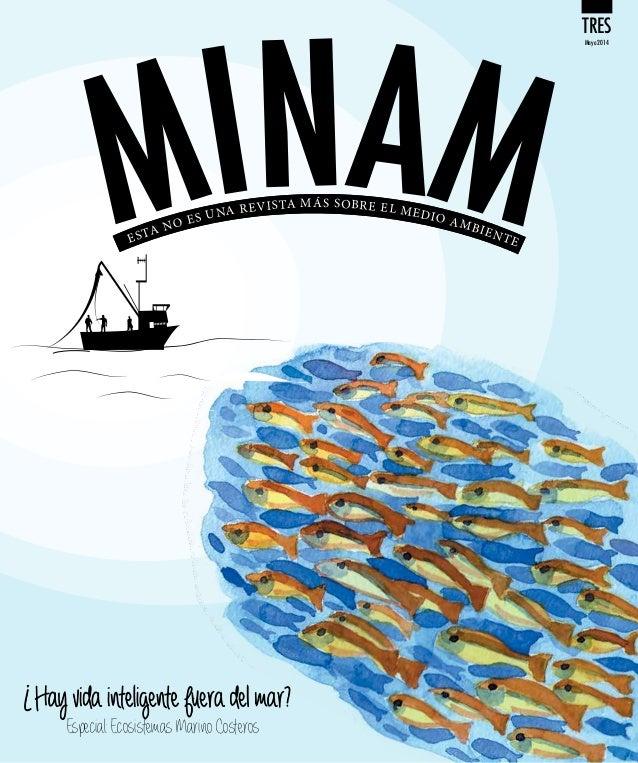 MINAM - Boletin 03, mayo 2014