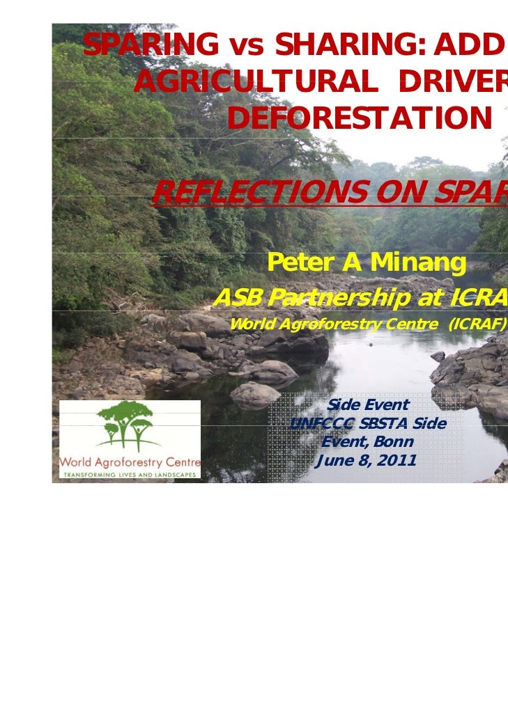SPARING vs SHARING: ADDRESSING   AGRICULTURAL DRIVERS OF        DEFORESTATION   REFLECTIONS ON SPARING           Peter A M...