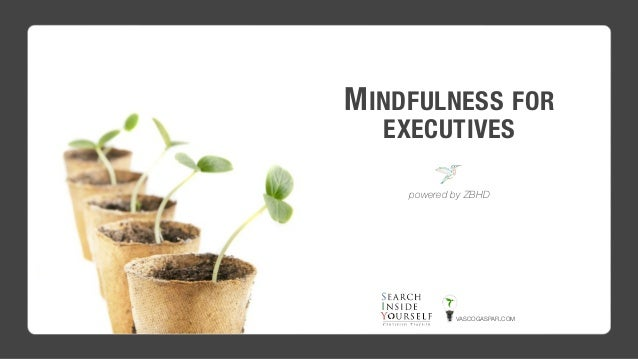 MINDFULNESS FOR EXECUTIVES powered by ZBHD VASCOGASPAR.COM