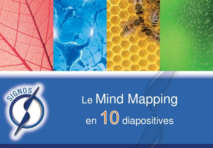 Mind Mapping en 10 Slides