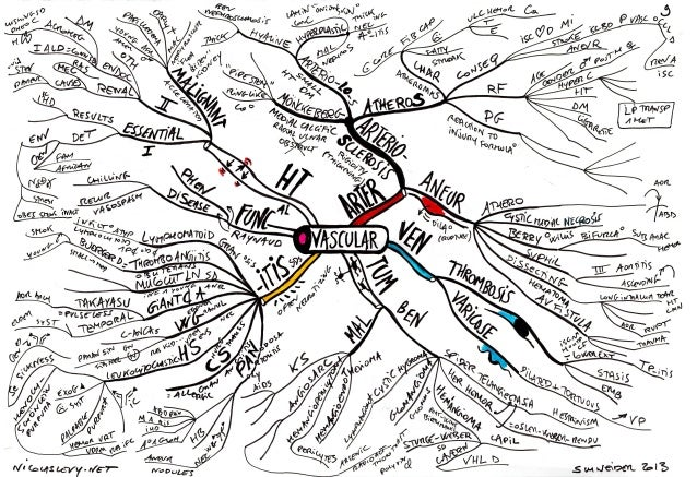 Mind maps pathology_vascular_heart