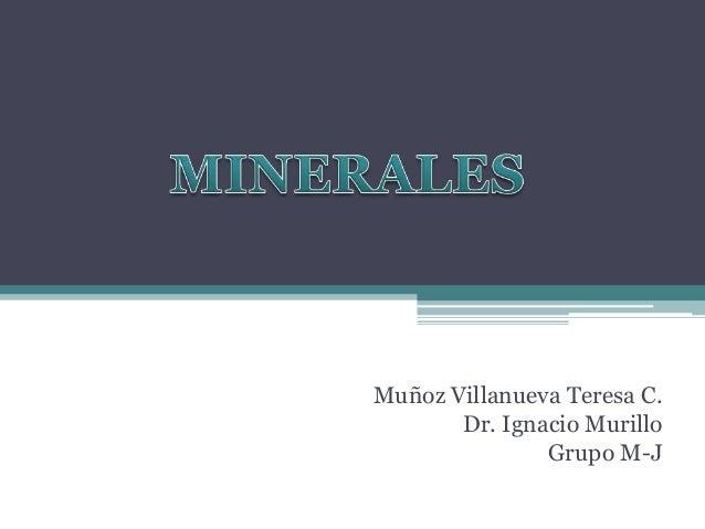 Muñoz Villanueva Teresa C. Dr. Ignacio Murillo Grupo M-J