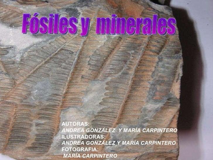 Minerales y fósiles