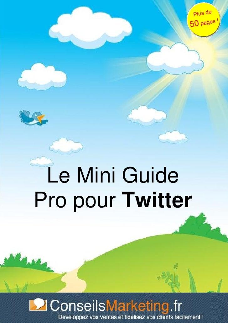 Guide Twitter pour Professionnels