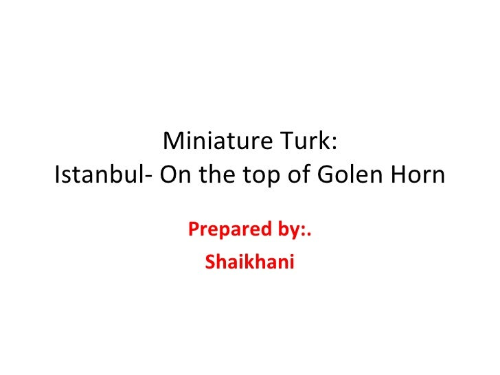 Miniature Turk: Istanbul- On the top of Golen Horn Prepared by:. Shaikhani