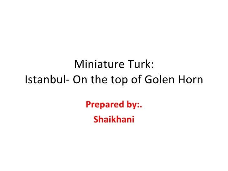 Miniature Turk