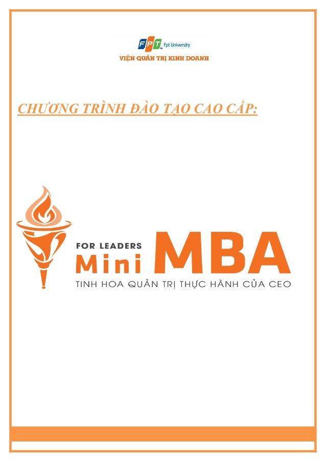 Mini mba t6
