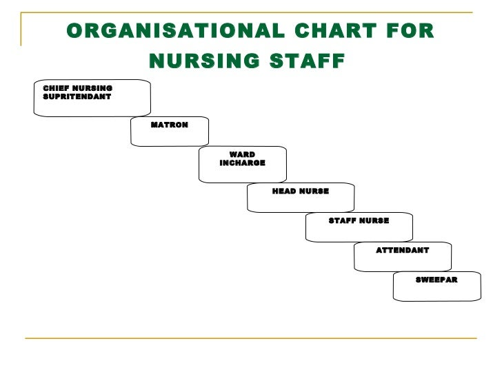 Organisational Chart Of A Nursing Home