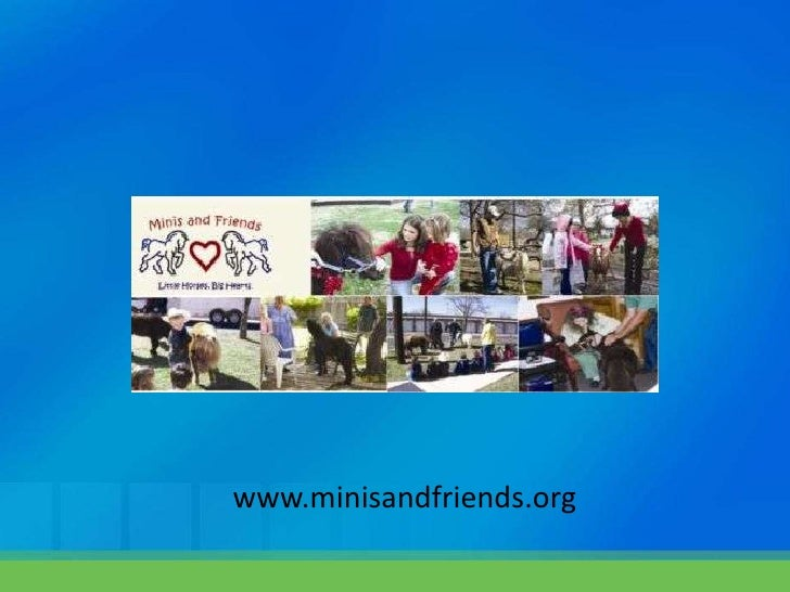 www.minisandfriends.org<br />