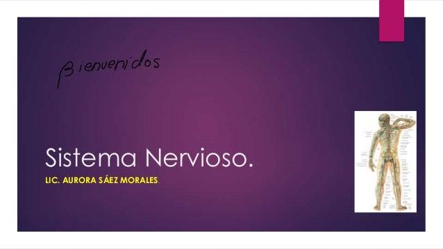 Sistema Nervioso. LIC. AURORA SÁEZ MORALES.